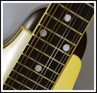 picture of mandolin neck