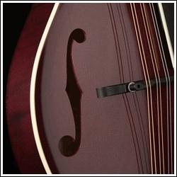 "Image of the ""f"" holes on a mandolin."