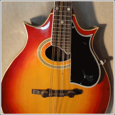 Image of a 2-point mandolin